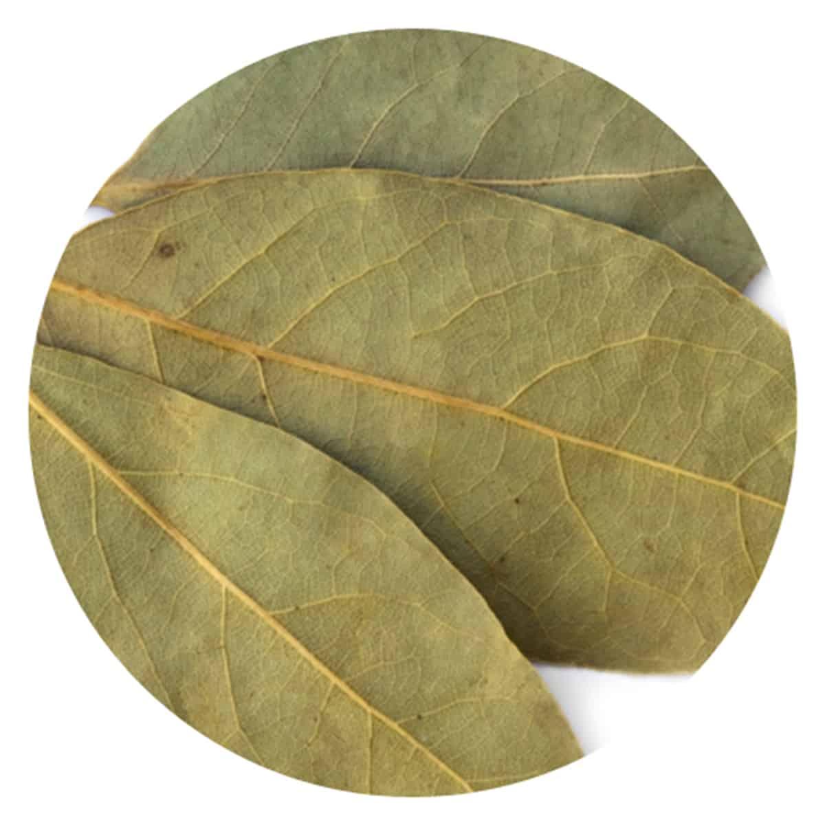 Buy IAG Foods Dried Bay Leaves (Tejpatta) - 1 kg