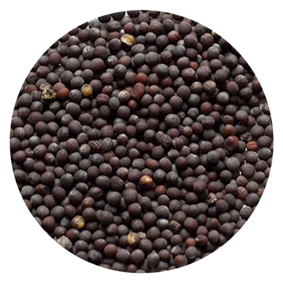 Buy IAG Foods Black Mustard Seeds - 1 kg