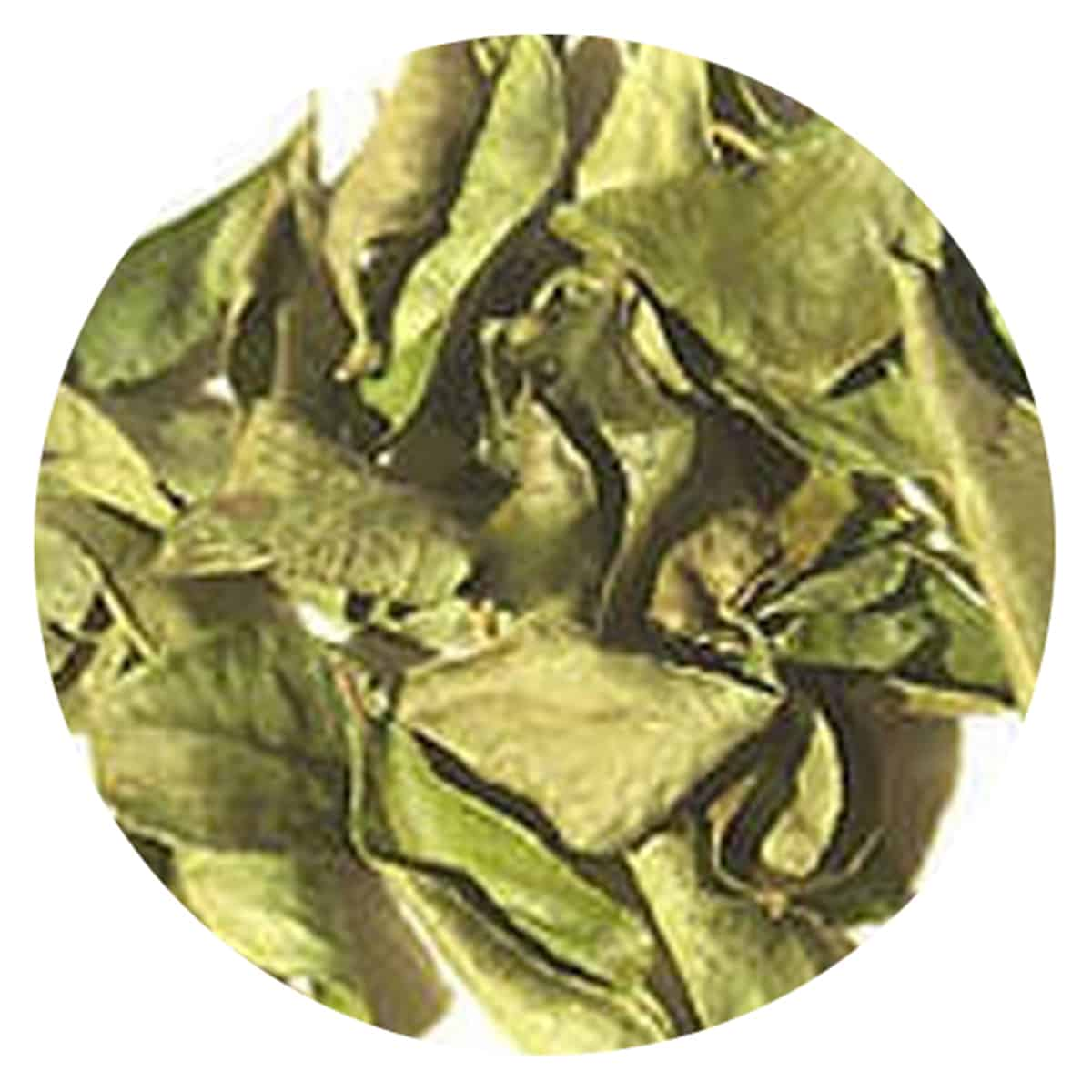 Buy IAG Foods Dried Curry Leaves - 1 kg