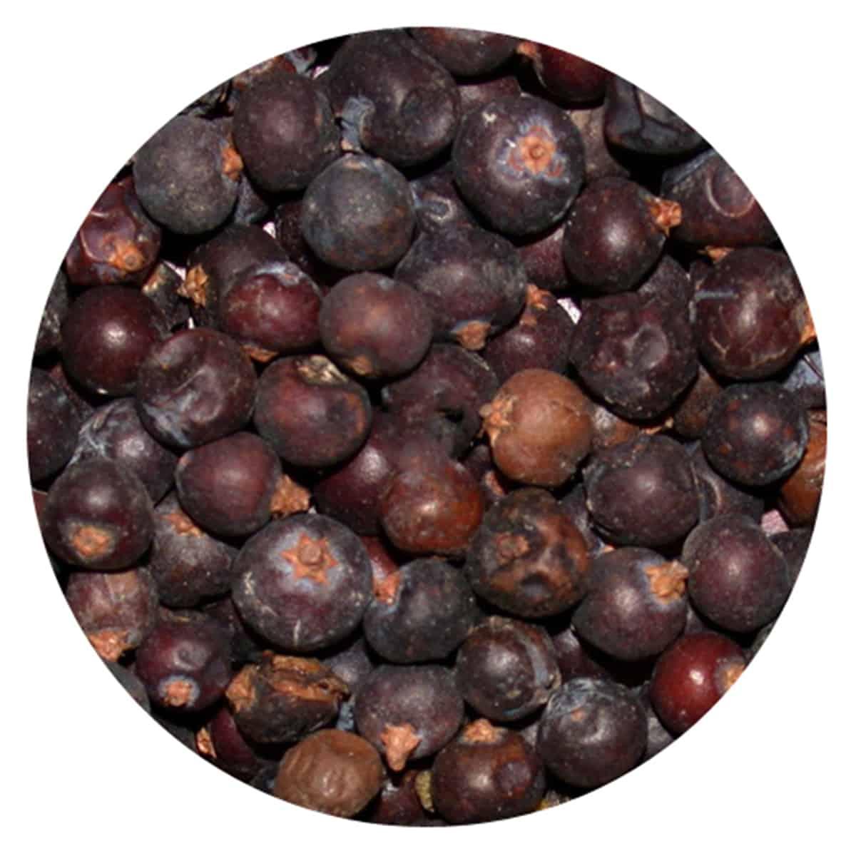 Buy IAG Foods Dried Juniper Berries - 1 kg