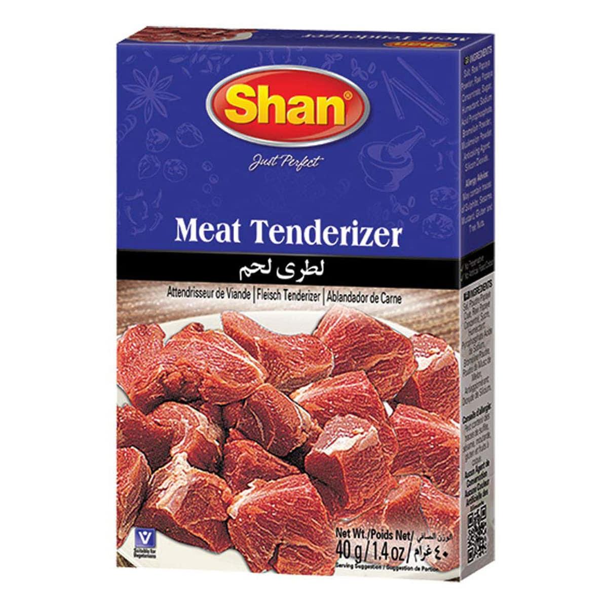 Buy Shan Meat Tenderizer - 40 gm